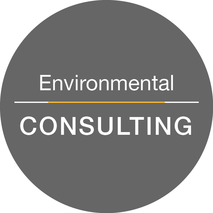 Environmental Consulting